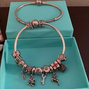Pandora Bangle w/ All Charms  + Pandora Bracelet